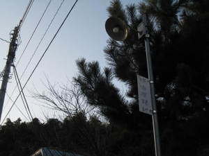 20101_028
